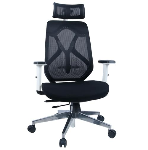 Rothwell Ergonomic Mesh Back Office Chair With Adjustable Arms and Headrest - Black and White