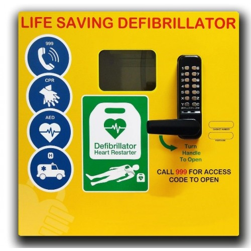 DS-1000 Stainless Steel Defibrillator Cabinet with Keypad Lock, Heater, LED Light Yellow