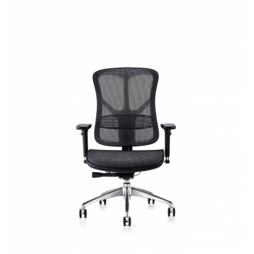 F94 101 Series Ergonomic Synchronised Mechanism Black Mesh Back & Seat Chair with 3D Adjustable Arms