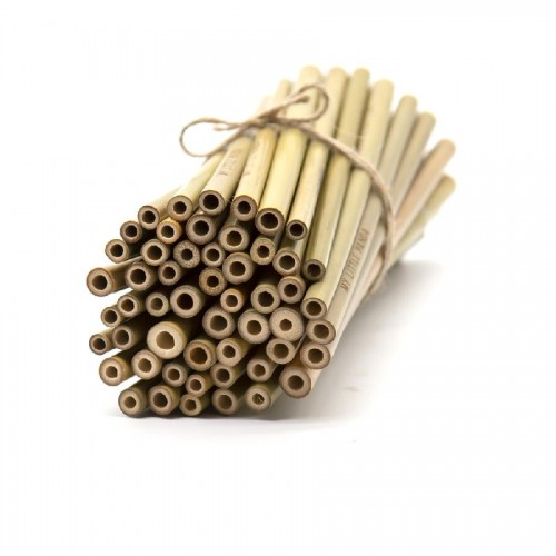 Bamboo Straws for Events - Pack of 100