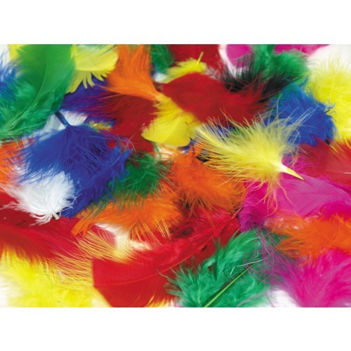 School Assorted Bright Coloured Craft Feathers 28g [Pack 1]
