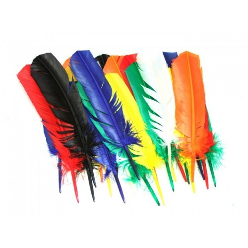 School Assorted Indian Coloured Craft Feathers 25-30cm [Pack 25]