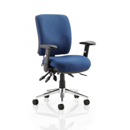 School Ergonomic Chiro Office/Teacher Chair 3 Lever Adjustable With Arms Blue Upholstery