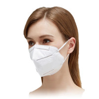 KN95 High Filtration Efficiency Particulate Protection Respirator Pk10