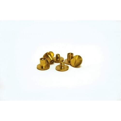 Brass Binding Screws 2mm Pack of 100