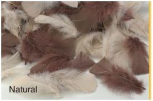 Natural Feathers 20gsm Assorted