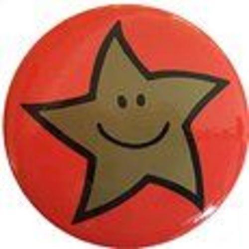 Reward Badges 38mm Diameter Gold Star Pack 20s