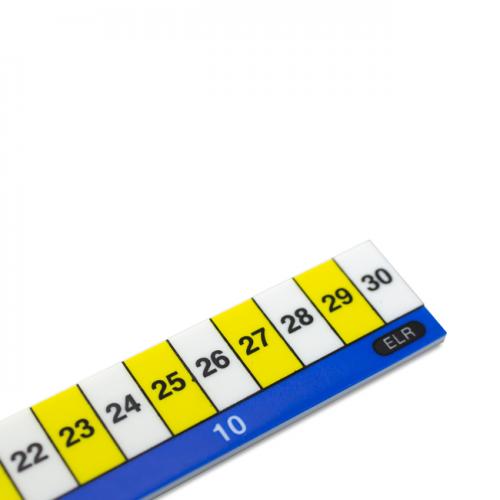 Plastic Early Learning Ruler 30cm ELR10
