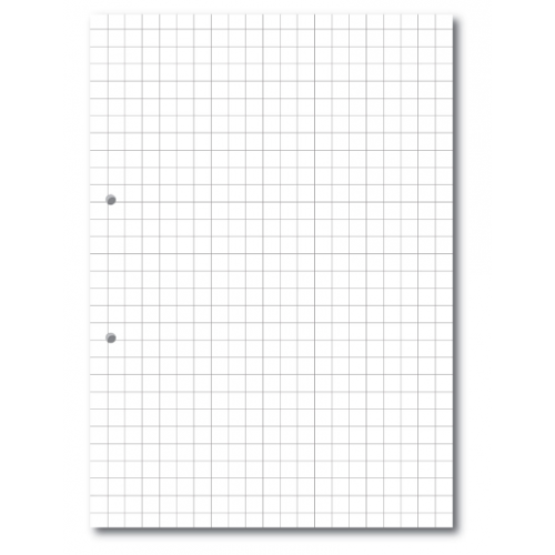 Exercise Paper A4 10mm Squares Punched Pack 500s