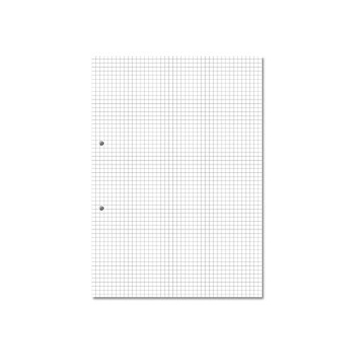 Exercise Paper A4 5mm Squares Punched Pack 500s