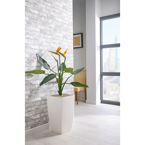 Bird of Paradise Floor Standing Plant