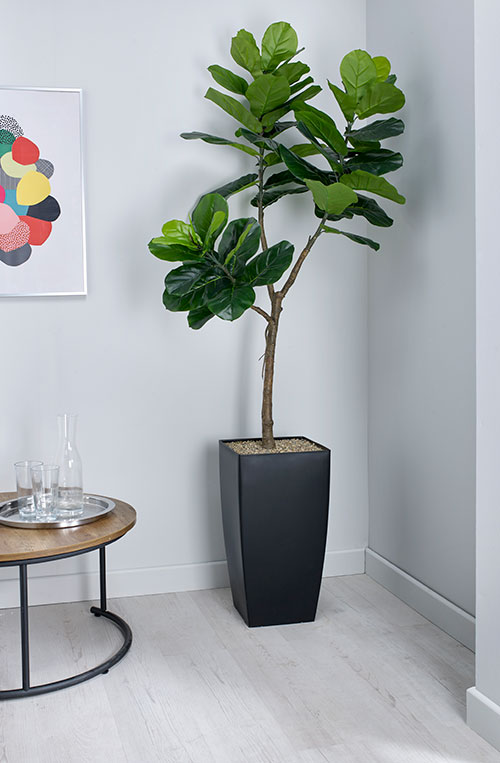 Fiddle Leaf Fig Artificial Plant