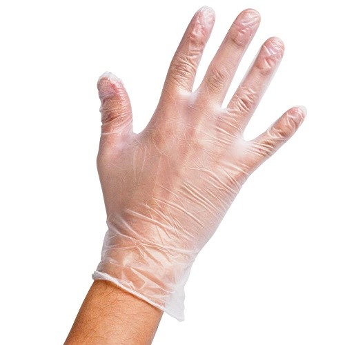 Clear Vinyl Gloves (Large) 100 x Examination Gloves