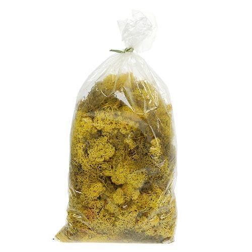 "Polythene Bag  12x24"" LLB (305x610mm)  1000/pack"