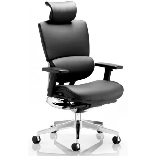 Alpha Premium Quality Multi-Functional Executive Task Chair