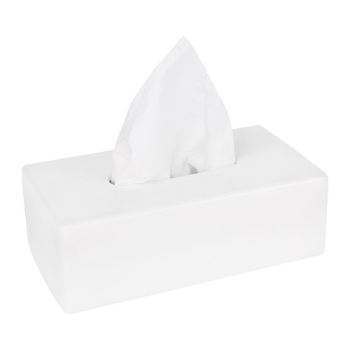 Facial Tissues White