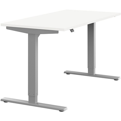 Zoom Sit Stand Desk 1600 x 800