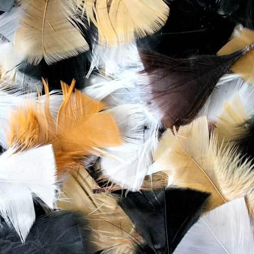 Natural Feather Assortment 50g Bag
