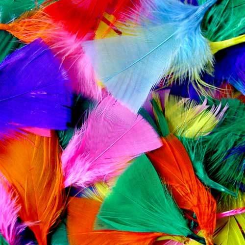 Coloured Feather Assortment 50g Bag