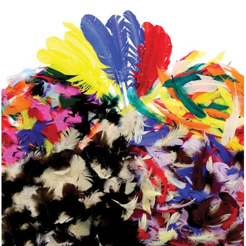 Assorted Feathers Classpack