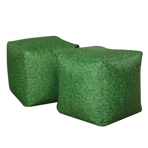 Learn About Nature Grass Bean Bag Cubes
