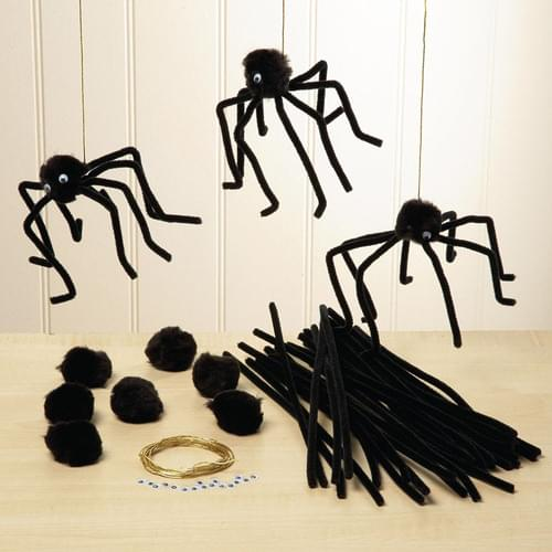 Spider Craft Kit