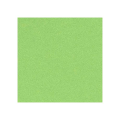 Canford Paper A1 Apple (402275211) 150gsm  Single sheet