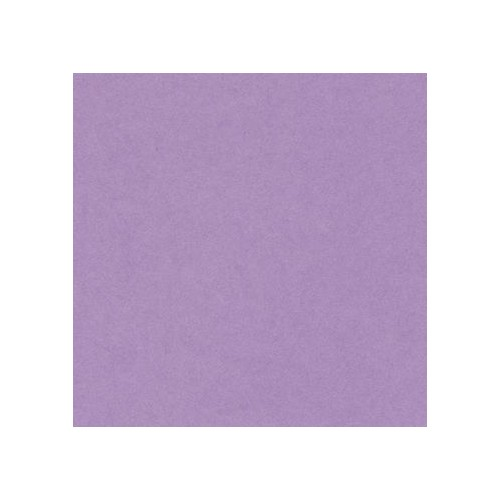 Canford Paper A1 Lilac (402275210) 150gsm  Single sheet