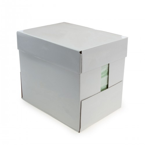Everyday Copier Paper 80gsm A4 Pale Green - Box 5 Reams - 2500 Sheets