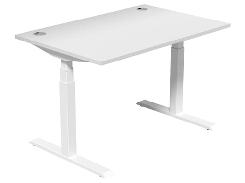 Electric Height Adjustable Desk 1200 * 800 mm White Top White Legs