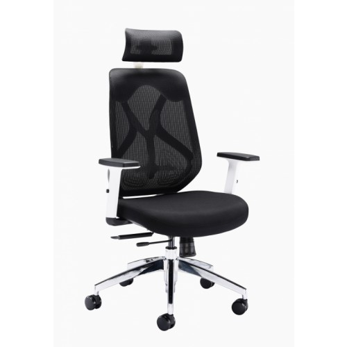 Maldini Mesh Posture Ergonomic Chair