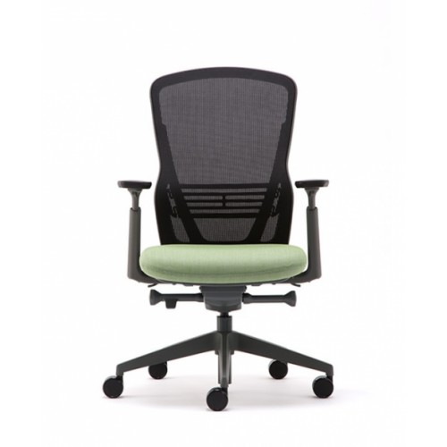 Senator Ousby Task Chair with Muti Function Arm