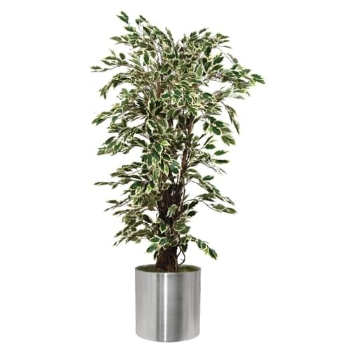 Artificial Plants and Planters