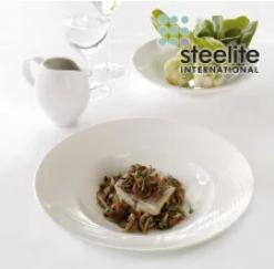 Steelite  Portfolio
