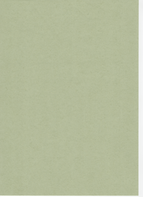 Moss Green Recycled Card A4 190gsm 100 sheets
