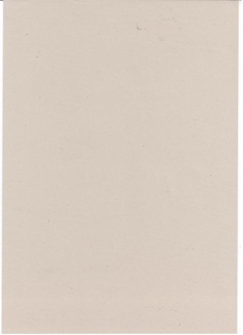 Pale Grey Recycled Sugar Paper 100gsm A4 x 100