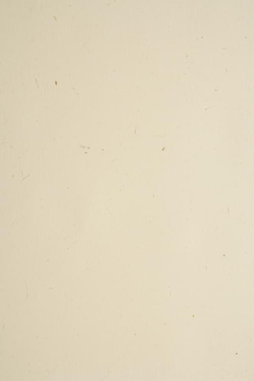 Ellie Poo Paper A4 110gsm 100 sheets