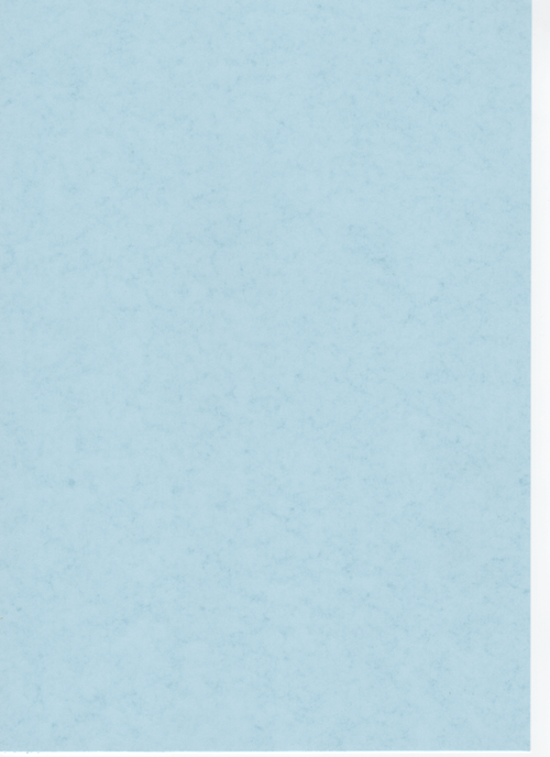 Pale Blue Recycled Card A4 190gsm 100 sheets