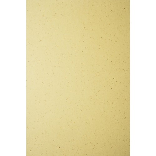 Bier Lager Ivory Card A4 250gsm 50 sheets