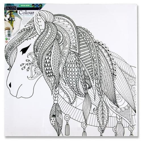 Icon 300X300Mm Colour My Canvas - Pony