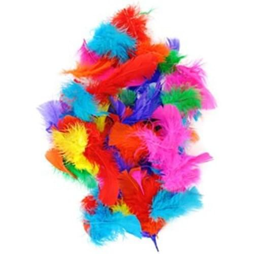 Feathers bright colours Assorted pack 250