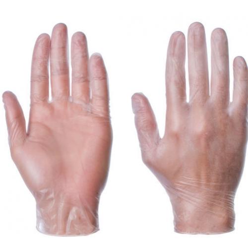 Vinyl Powder Free Gloves Pack 100 Gloves Extra Large