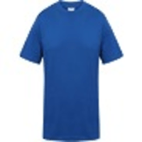 UC301 ROUND NECK T SHIRT ROYAL BLUE MEDIUM