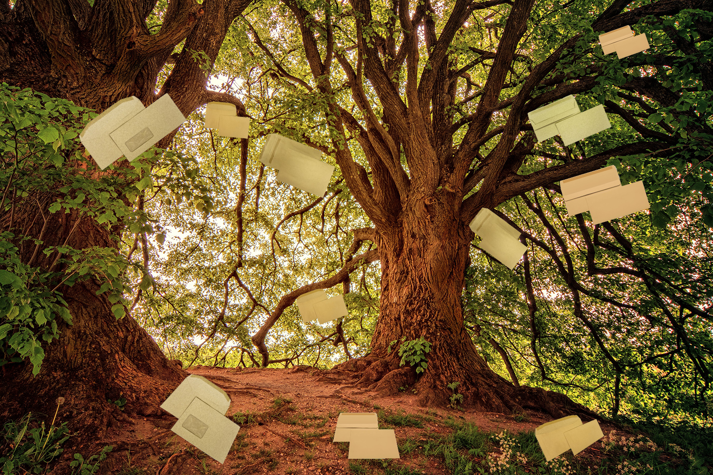Treesaver Recycled Envelopes