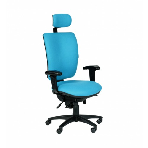 Ergonomic Task 24 Chair