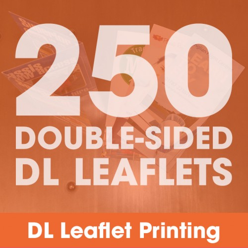 DL Leaflets - 250 Double-Sided Full-Colour
