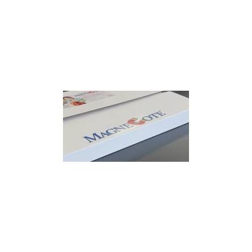 Magnecote 13Pt 5046SHMT 13PSRA2FS Sra2 450X640mm 688Gm2 330Mic