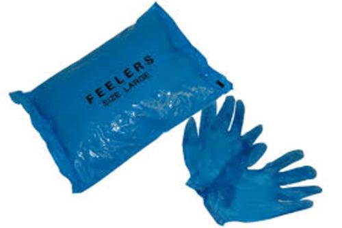 Vinyl Gloves Blue Powdered Large Case 2000
