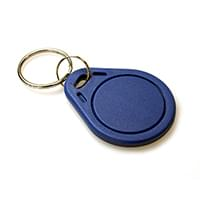 EM4200 125KHZ KEYFOBS (PACK OF 100)
