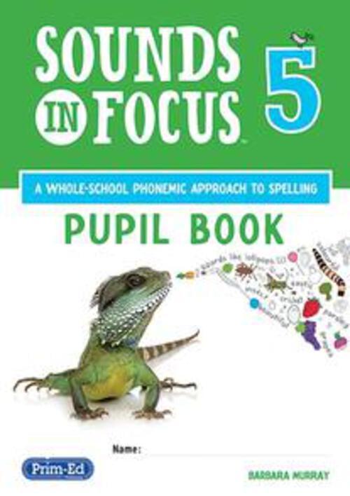 Sounds in Focus 5